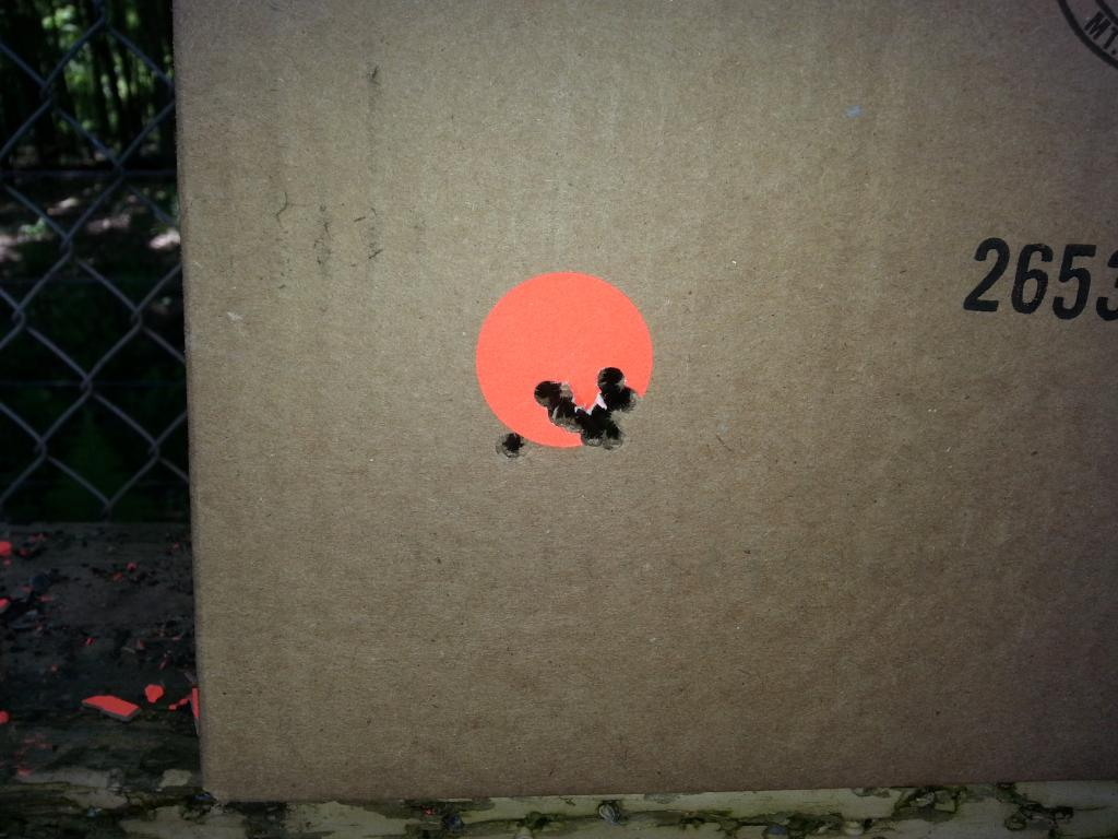 10 shots at 30 yards.